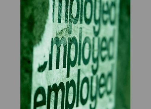 278863_employment